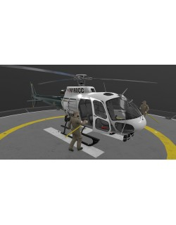 AS-350 Hillsborough County Sheriff Animated
