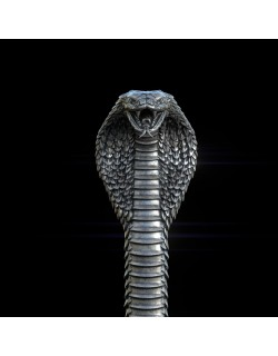 Cobra head Handle for walking Stick