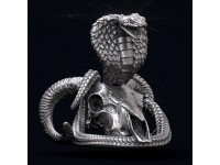 Cobra on a skull. Element for jewelry.