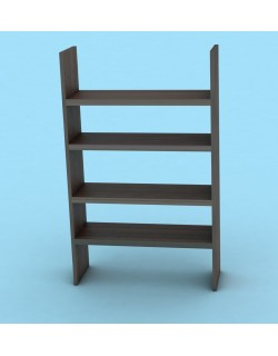 Frame and Panel Bookcase