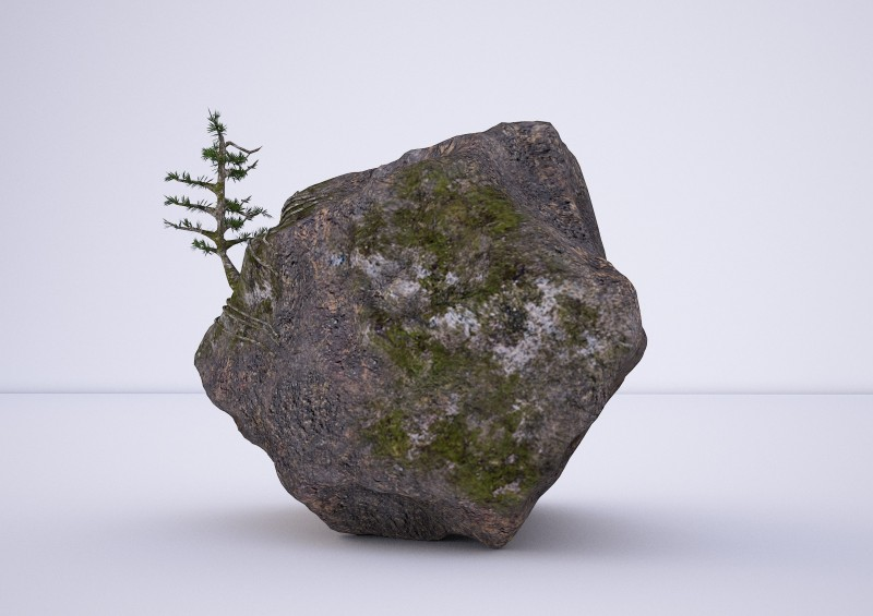 natural rock tree model 3D model