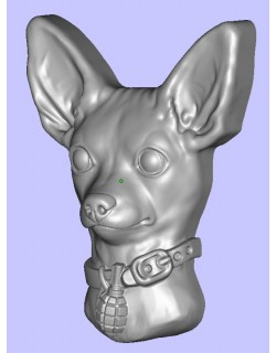 Toy terrier head